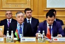 Ashgabat hosts 29th meeting of CIS council on healthcare cooperation