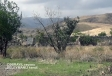 Azerbaijan's Defense Ministry releases video footages of liberated from occupation Suleymanli village, Jabrayil district