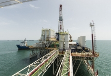 Azerbaijani oil sells for $43.64