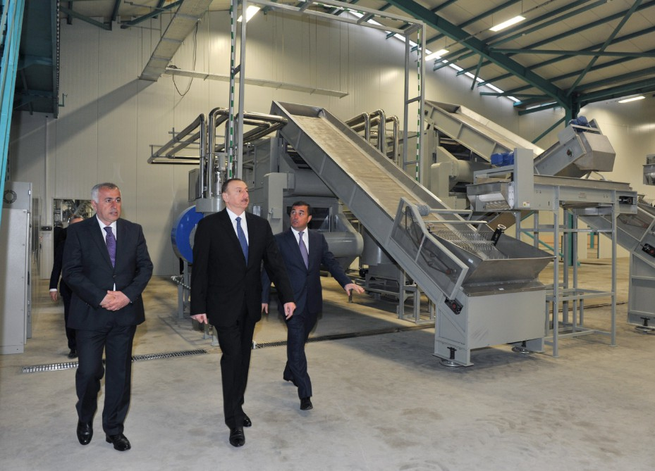 President Ilham Aliyev reviewed a tea processing factory of Astarachay LLC VIDEO