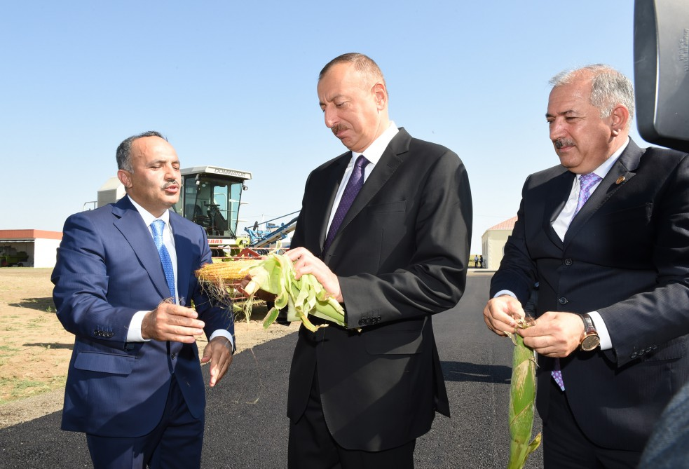 President Ilham Aliyev reviewed a grain plant of Avangard LLC in Jalilabad VIDEO