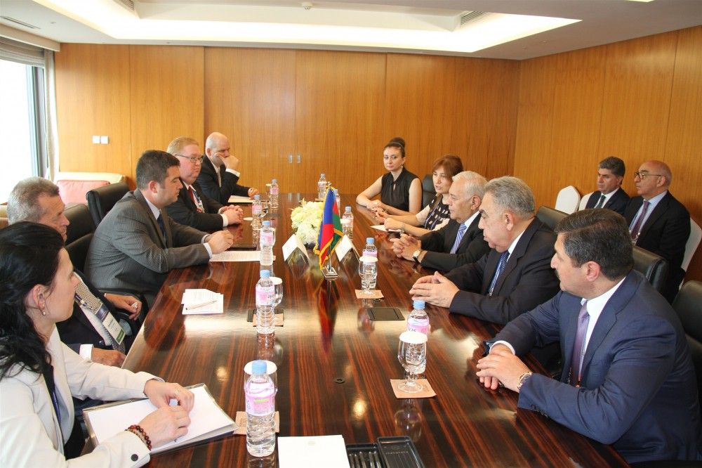 Milli Majlis chairman: Azerbaijan and Czech Republic are friendly and partner countries