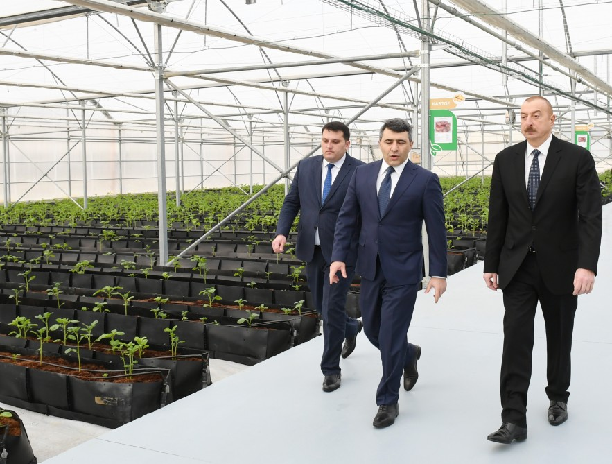 President Ilham Aliyev attended inauguration of Research Institute of Vegetable Growing VIDEO