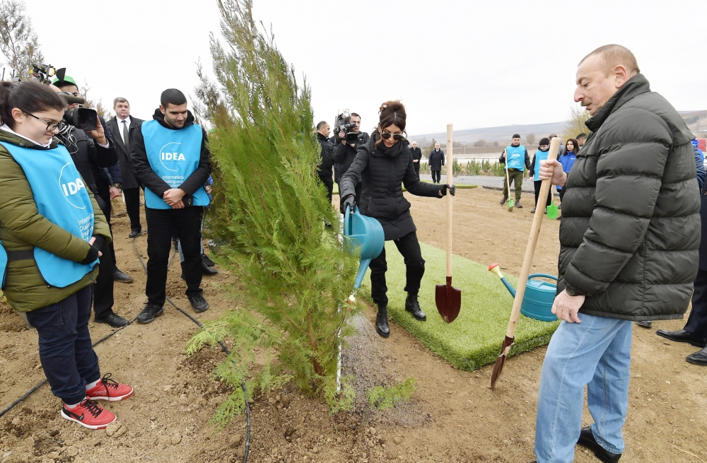 President Ilham Aliyev and first lady Mehriban Aliyeva attended tree-planting campaign in Shamakhi district VIDEO
